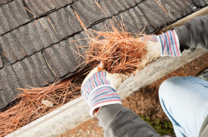 Gutter Cleaning Milwaukee, WI