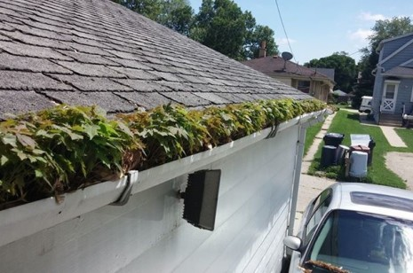 gutter cleaning pros milwaukee